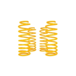 Buy TJM SPRING COIL SERIES 2000 (PR) FRONT for Land Rover Discovery-I Online